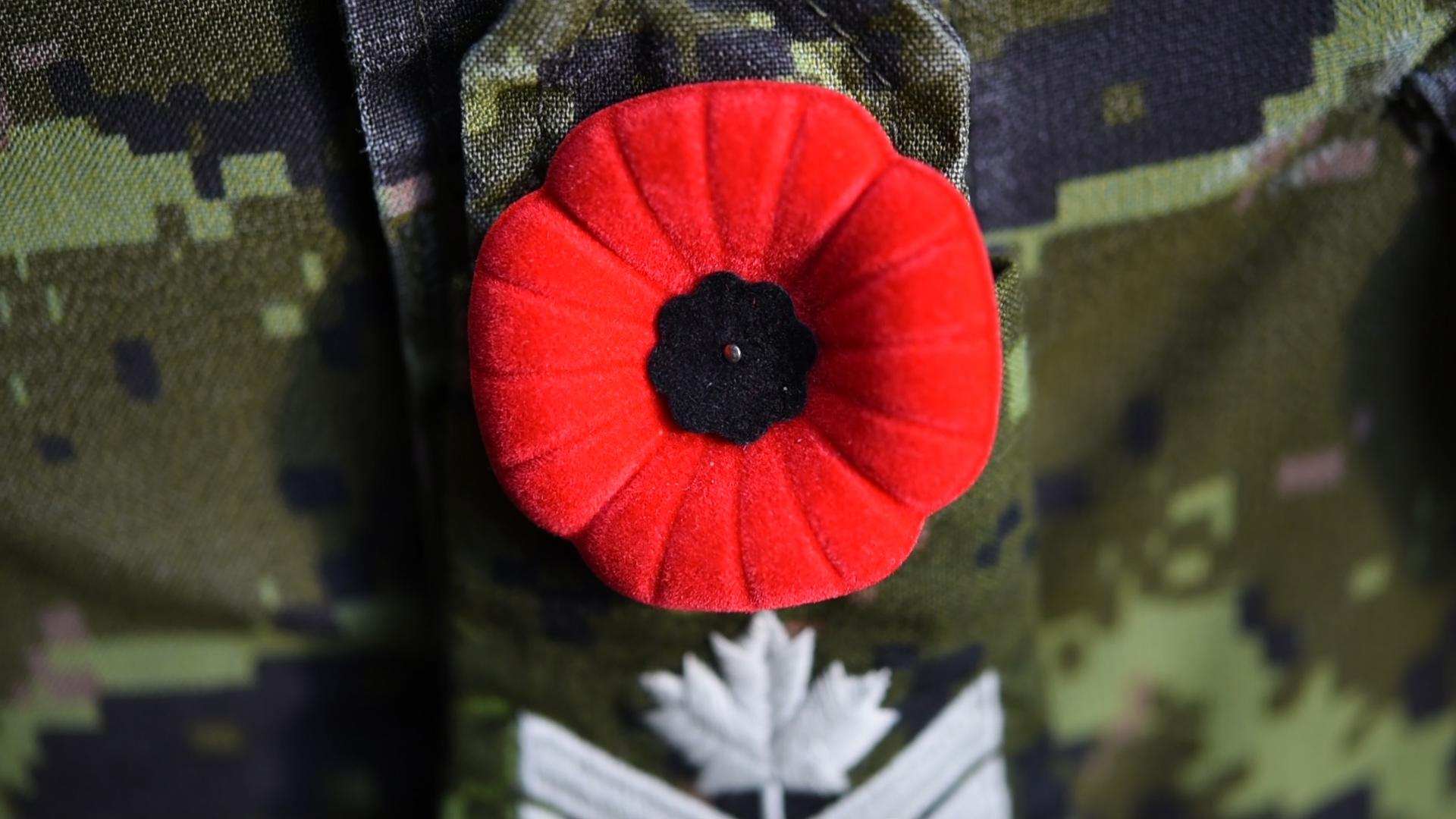 A poppy pinned on a Canadian Army uniform